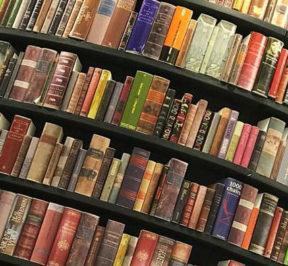 Salone del Libro di Torino: guida alla sopravvivenza