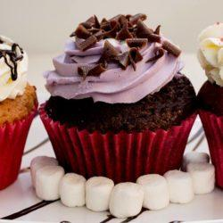 The_Bakery - bakery-cupcakes-min.jpg